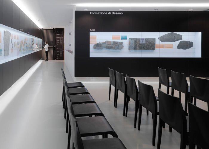 alias_project_Museo-Fossili_dettaglio